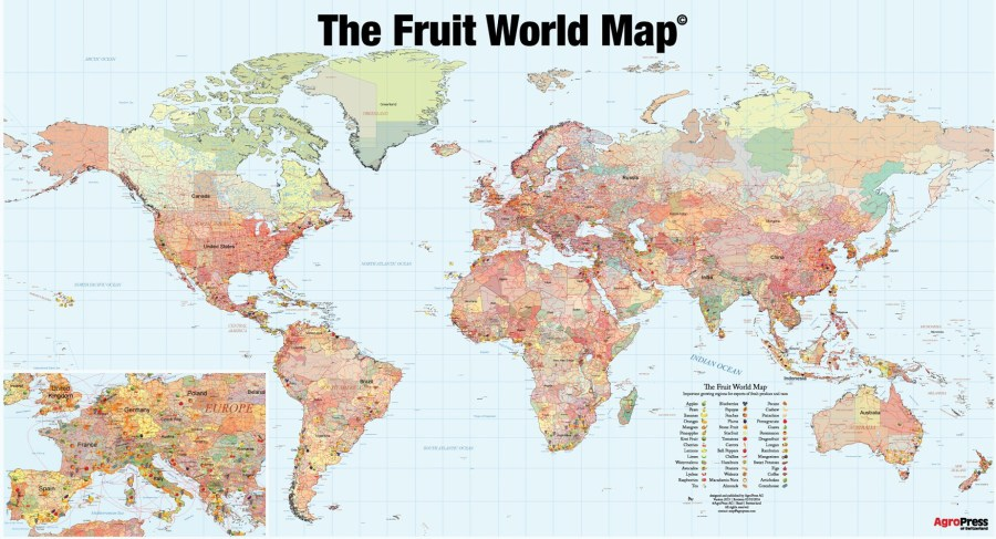 Fruit+Nut World Map GIFT EDITION Poster size