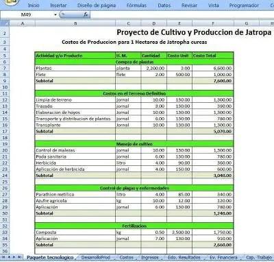Paquete tecnológico para la producción de Jatropha
