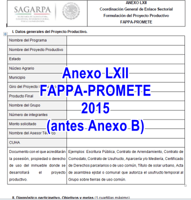 Anexo B 2015 FAPPA y PROMETE