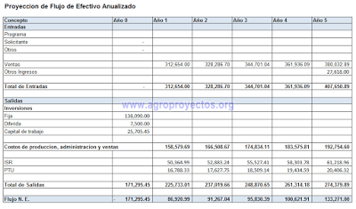 Flujo de efectivo anualizado, ejemplo en formato INAES