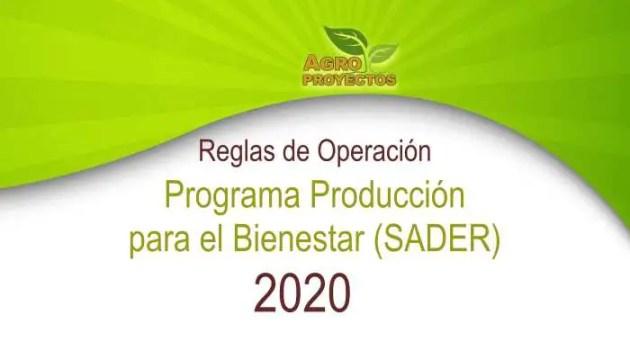 Reglas Producción para el Bienestar 2020