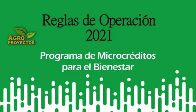 Programa de Microcréditos 2021
