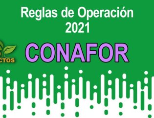 CONAFOR 2021