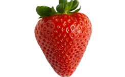 strawberry-reference