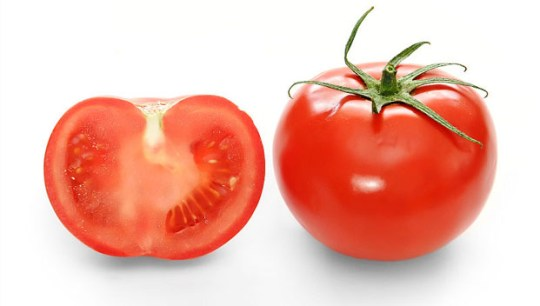 Sejarah Buah Tomat
