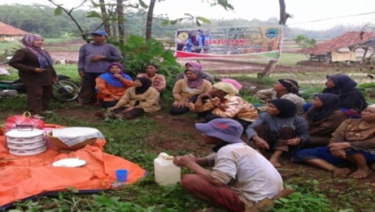Peningkatan Kemampuan Kelompok dengan Pembinaan Penyuluhan Pertanian