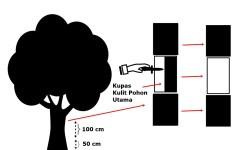 Kupas kulit pohon