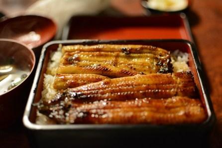 Japan, Food, Unagi, Eeljpg
