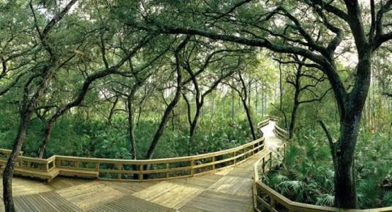 Orlando Florida nature