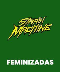Strain Machine FEM