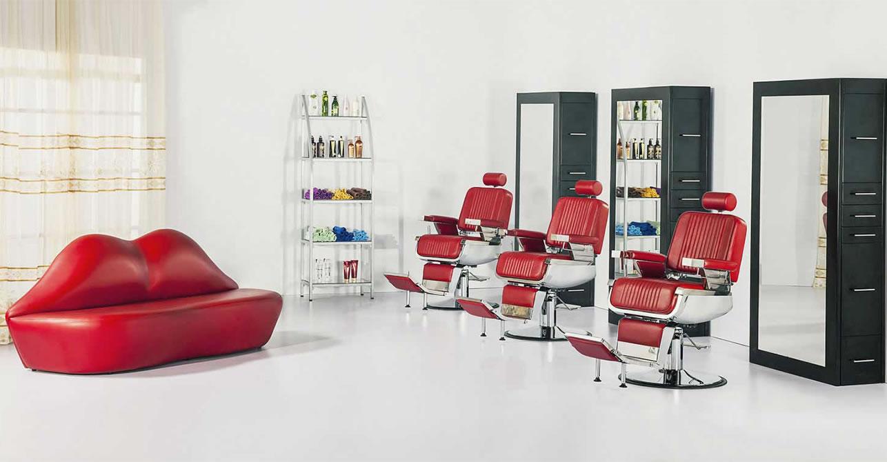 AGS BEAUTY Wholesale Salon Equipment Salon Furniture