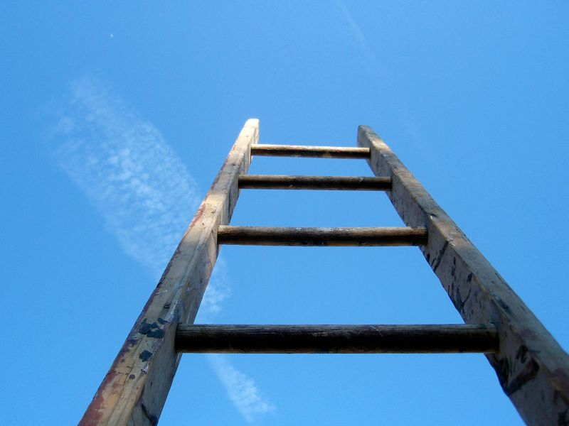 1280px-The_ladder_of_life_is_full_of_splinters