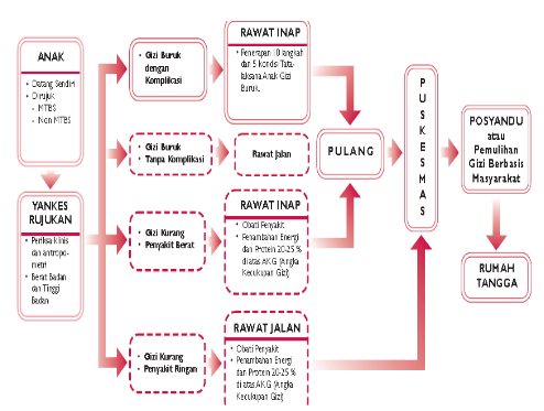 Langkah penanganan gizi buruk terbagi dalam fase stabilisasi dan rehabili