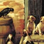 ¿Tiene un minuto para hablar de los cuervos?