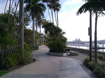 Winding path on the waterfront - the only thing that's lacking... agrarian landscaping