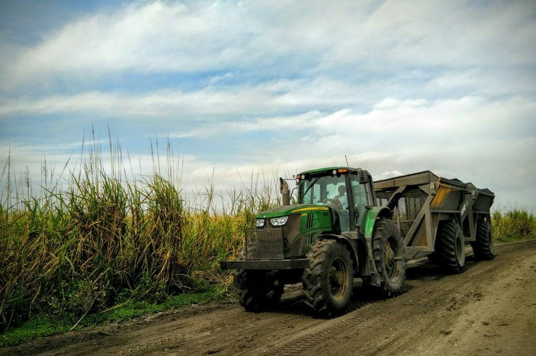US Sugar tractor moving freshly cut sugar cane near Clewiston