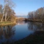 30a-Leuna Ockendorf Blick Von Saaleufer Auestraße Flussaufwärts Nach Osten (2)