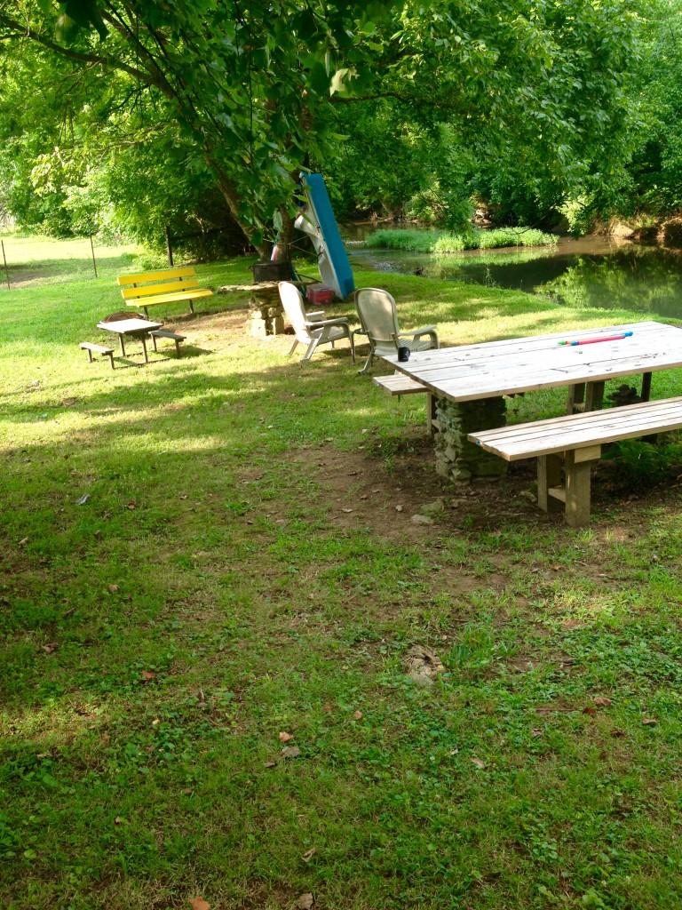 creekside clean-up