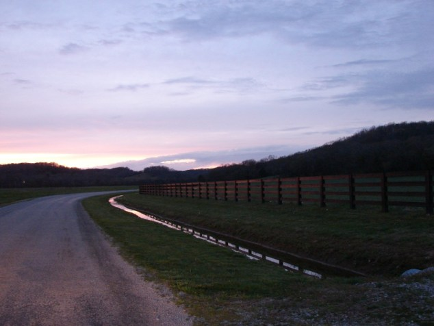 sunset on fence