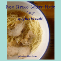Easy Chinese Chicken Noodle Soup | Spicy Food For a Cold