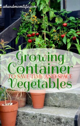 Growing Container Vegetables to Save Time and Money
