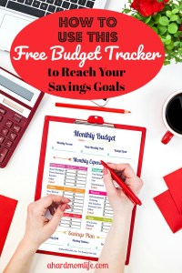Reach Your Savings Goals with this This Free Budget Tracker