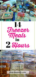 14 Freezer Meals in 2 Hours | Easy Freezer Meals