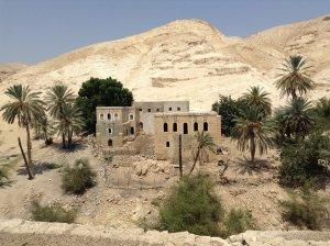 Oasis. Construcciones bajas de color ocre rodeadas de palmeras. Como fondo el pico de una colina o un otero.