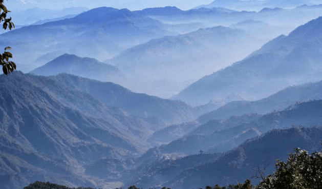 The Beautiful Binsar: Explore the Realms of Wildlife
