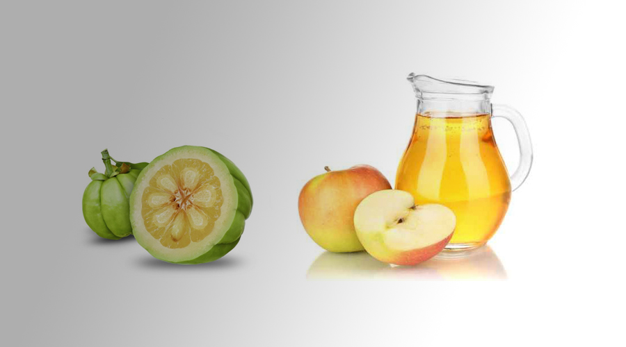 garcinia cambogia and apple cider vinegar weight loss diet reviews