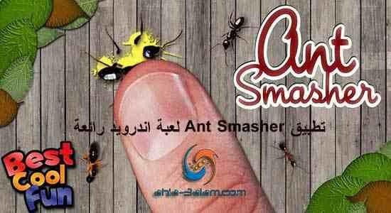 قتل النمل المخرب تطبيق Ant Smasher لعبة اندرويد