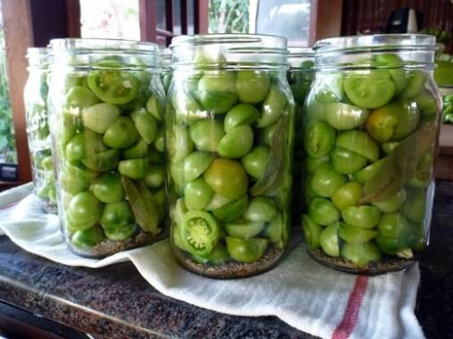 طريقة تحضير مخلل البندورة الخضراء