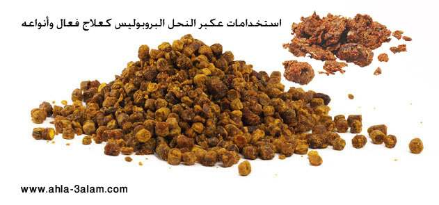 عكبر النحل البروبوليس استخداماته كعلاج فعال وأنواعه