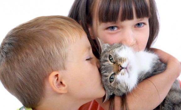 أمراض تنقلها الحيوانات