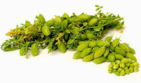 فوائد الحمص الأخضر و القيم الغذائية العالية التي يحتويها