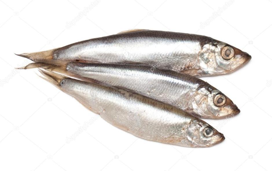 Chacha (*) Balık