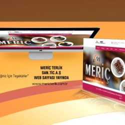 meric-1024x480