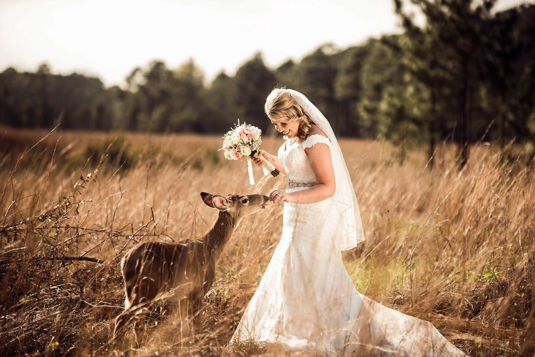 bridal photo in field with deer