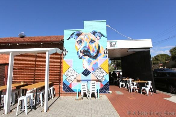 Holly Rayes cafe in Bassendean. Artist Anya Brock