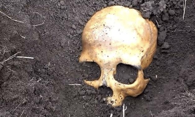Homem encontra crânio de ex-marido da esposa no quintal de casa