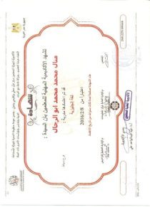 received_217233493763832