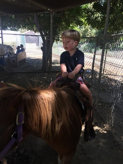 griffith_park_pony_ride