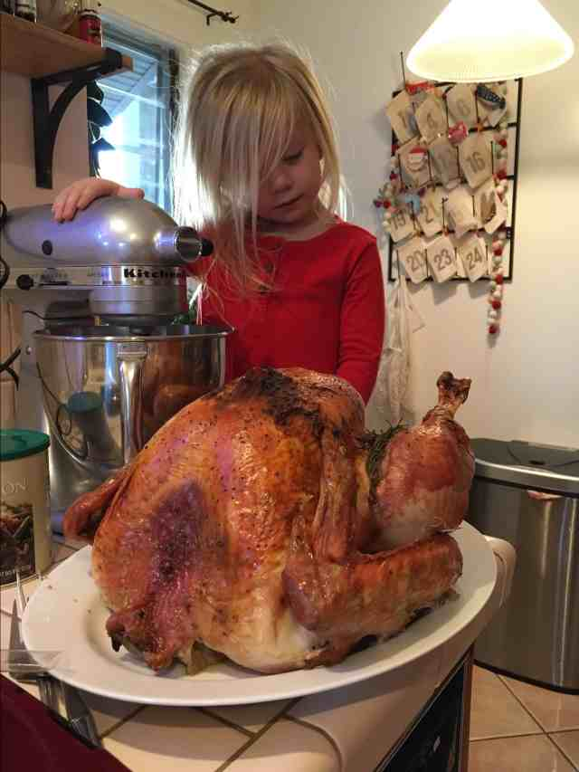 Thanksgiving 2017|Ahrens at Home