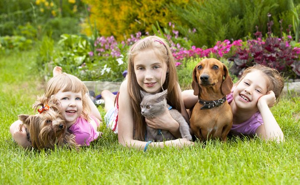 little girls and a kitten and dog