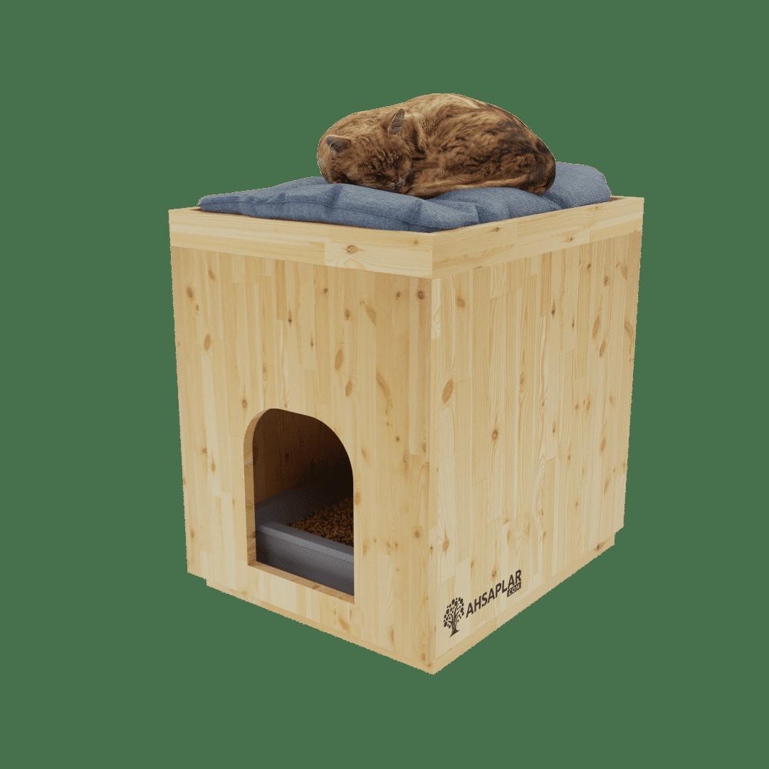 Çam kedi evi