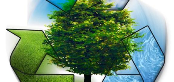 lingkungan bersih sehat rapi bermanfaat