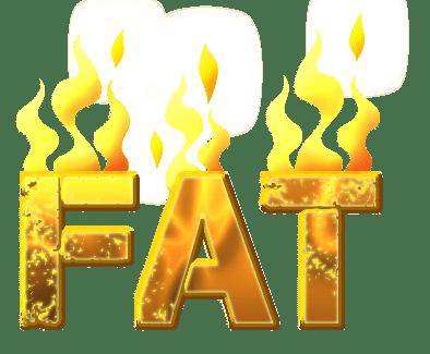 suplemen pembakar lemak