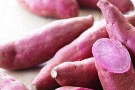 berbagai resep ubi jalar