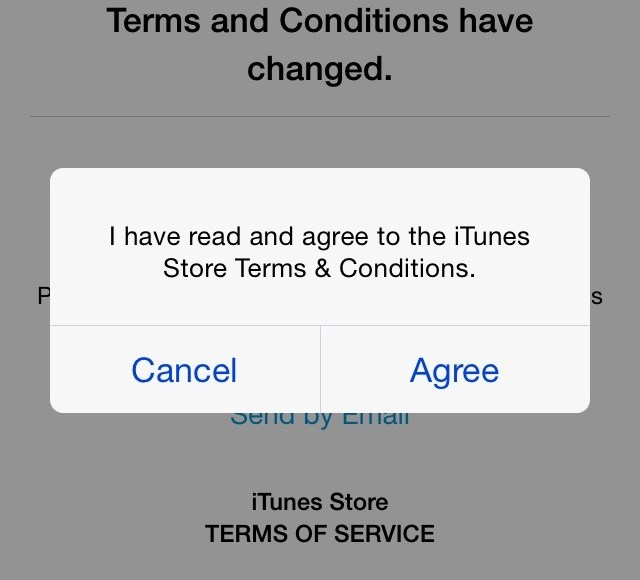 IMG_7248 iTunes Store Terms and Conditions – Agree Popup