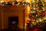 Christmas Tree and Fire Place